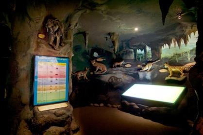 catmuseum3