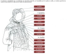 costume occitano