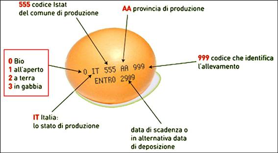 uovo-leggere-etichetta