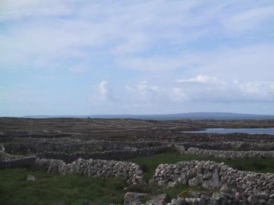 landscape12