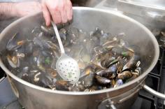 connemara-mussel-festival-24