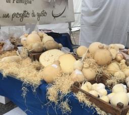 degustibus-cuneo-formaggi