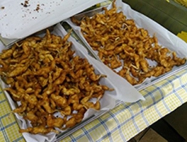 rane-fritte-3