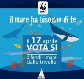 Referendum-Vota-SI-32