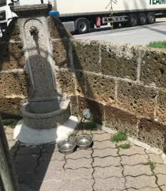 Autobar-Marenco-cani