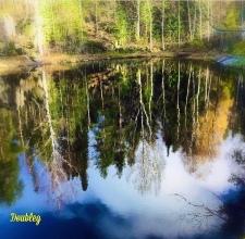 Finlandia - natura 5