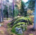 Finlandia - natura2